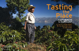 Coffee Origins: Tasting the Place
