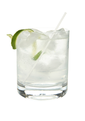 recipe_c_ginrickey_291x412