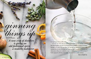 Artisanal Gin Distillers