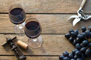 Best Biodynamic Wines
