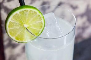 gin-rickey-slideshow