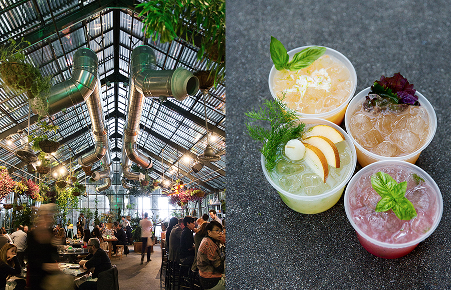 Snacks and cocktails in the beautiful Commissary greenhouse at The LINE hotel.