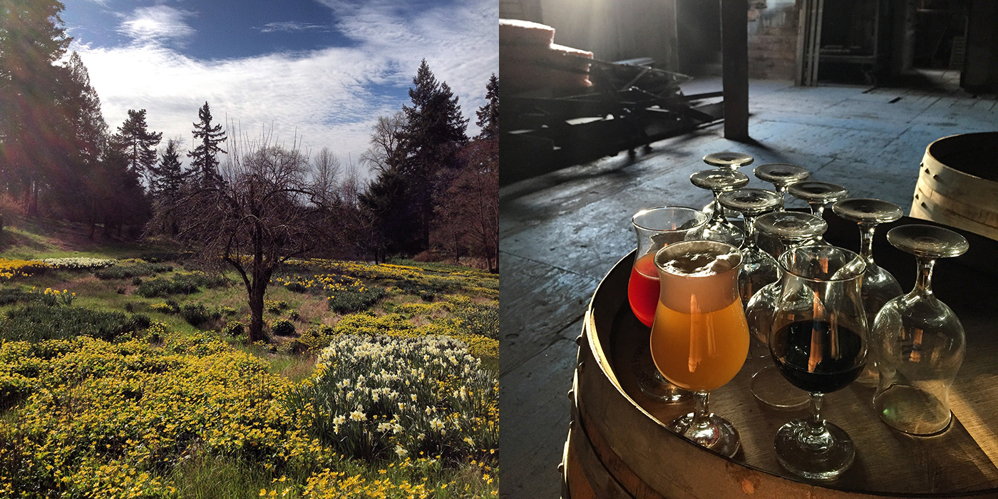 Oregon brewery Wolves and People are one of this year's Imbibe 75 companies to watch, and owner Christian DeBenedetti's Instagram skills are one more reason we can't wait to see these beer makers in action. Serene scenery from the pastoral farmstead location communicates how much of a role nature will play in the brewery's operating philosophy. | Follow: @wolvesandpeople