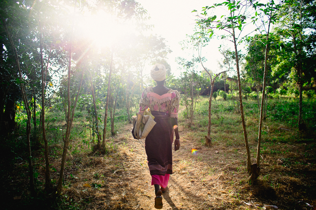 Mama Claude lives about half a kilometer away from the Carlsons. Most farmers in Burundi grow multiple crops to survive. Mama Claude grows coffee, but here she's on her way to harvest tea.