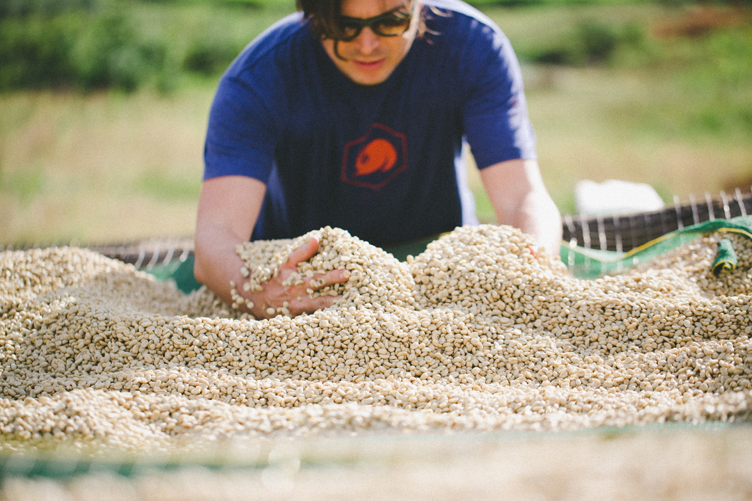 Ben Carlson taking part in the 2014 harvest.