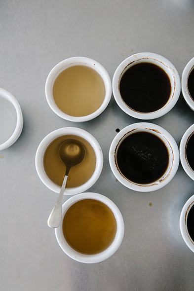 Different varietals of coffee possess unique qualities. After picking, processing and roasting, Ludwikowski tastes each type on its own to distinguish the nuances.