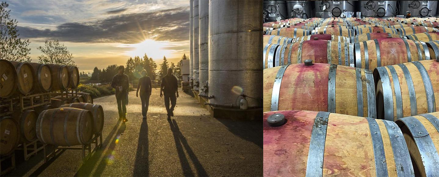 winery instagram accounts