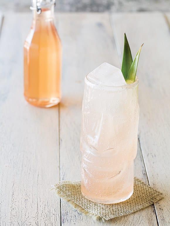 persimmon soda recipe