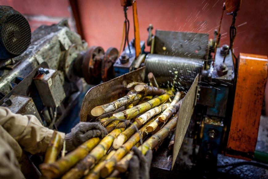 Pressing cane during harvest.
