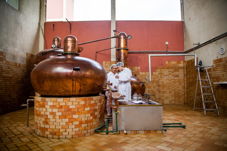Copper stills at Novo Fogo.