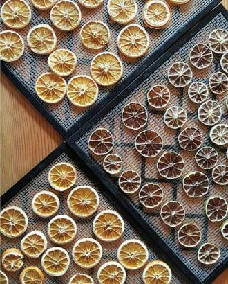 dehydrated citrus-vertical-crdt-perennial
