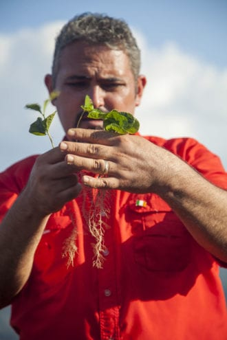 Omar Rodgríguez Romero, general manager of COCAFCAL and son of its founder, examining a coffee seedling.