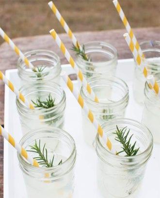 straws-vertical-crtsy-aardvark