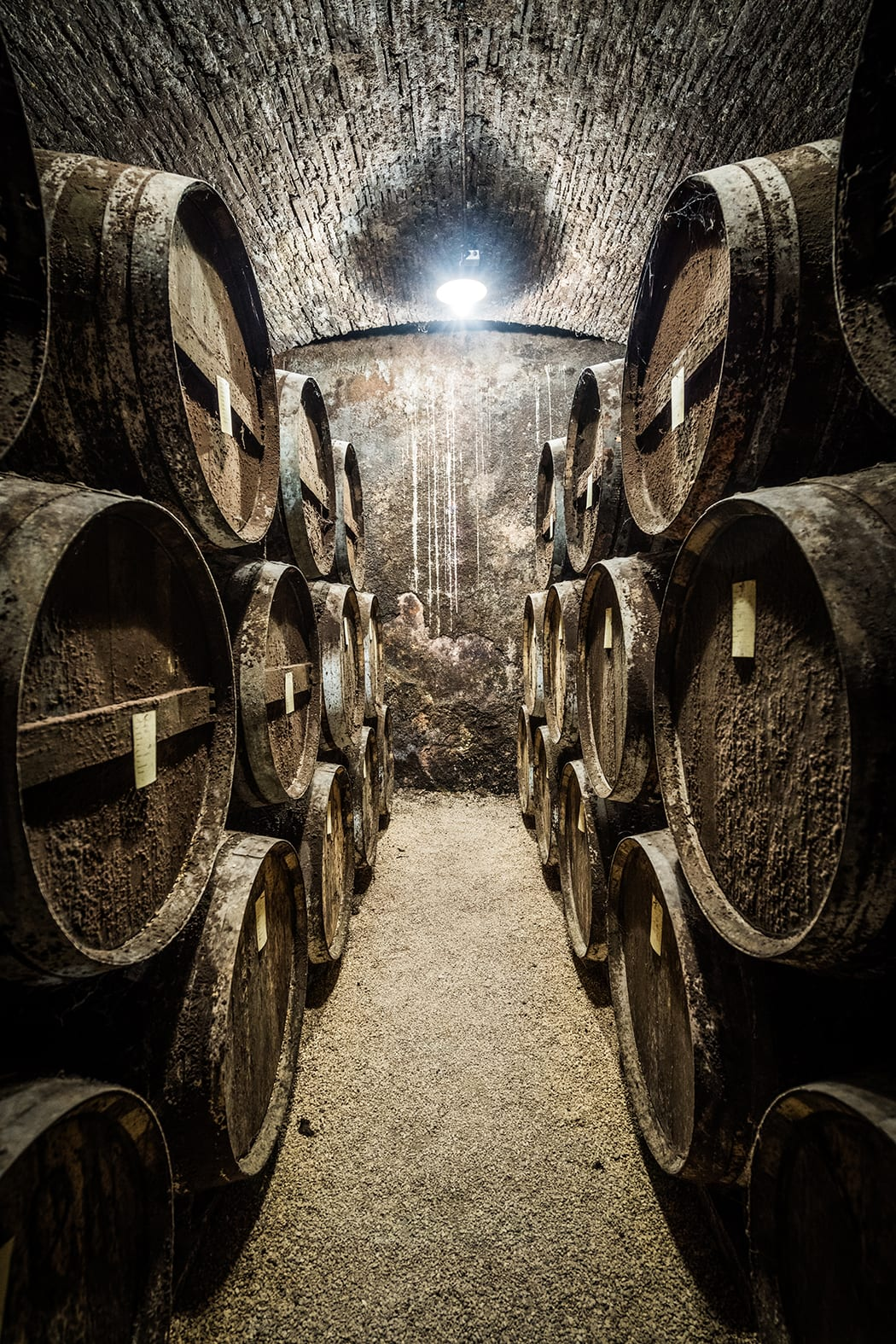 Barrels of Armagnac aging in one of the cellars maintained by Chateau du Tariquet in the Bas-Armagnac region of Gascony.