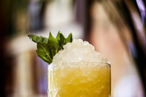 Mai Tai Riff: Secret Life of Plants