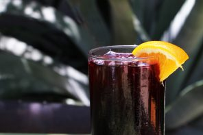 The Summer Splendor of the Tinto de Verano Cocktail
